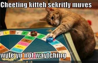 Cheating Kitty