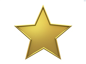 """What does the term """"gold star"""" mean?"""