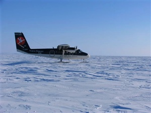What year did the first plane land at the geographic North Pole?