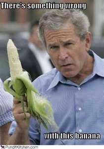 In 1990 President Bush vowed he would not eat any more of this vegetable. He said he did not like it and his mother always made him eat it. He proclaimed that now that he was president of the USA he wasn't going to eat any more of it. In response, U.S. vegetable growers sent a 10-ton delivery of this vegie directly to the White House!