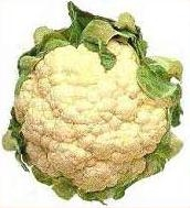 How To Make Cauliflower Palatable (Roasted Cauliflower)