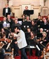 American Chamber Orchestra 2013