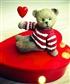 I just wanna be your teddy bear!
