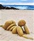 At the beach, thinking!
