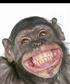 Brown eyes great smile