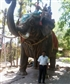 Vijaykumar8384