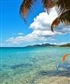 NEXT ADVENTURE Vieques Island in Puerto Rico