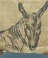 my donkey