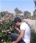 Wesha
