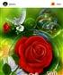 Sanjaykannan111