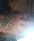 Tattoos2