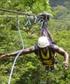 Costa Rica superman zipline