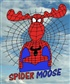 The real and only  *Spidermoose*