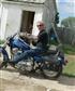 Harley28